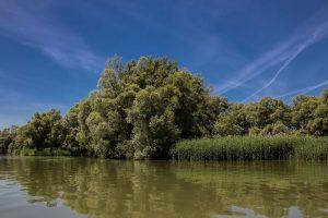 Rieky na Slovensku s domovom rýb